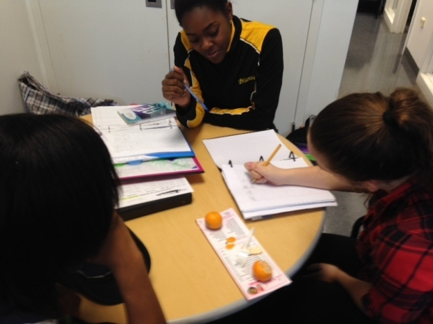 Peer to peer tutoring is proven to help student success levels.